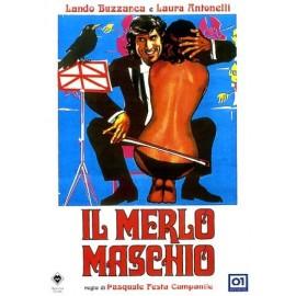Merlo Maschio (Il)